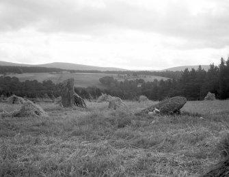 Pitchroy Lodge, standing stones.