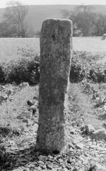 View of Borthwick symbol stone