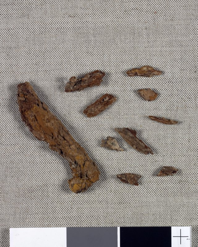 Digital copy of artefact photograph: Wood fragments from the handle of a scramasax.