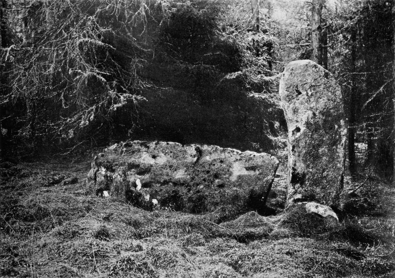 """Photograph of recumbent stone at Tillyfourie, taken from NNE. Titled: """"Whitehill Wood, Monymusk. Recumbent Stone and Flanker""""."""