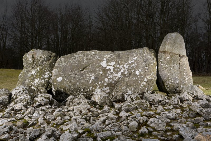 Recumbent and flankers, view from Loanhead of Daviot recumbent stone circle to N (flash)
