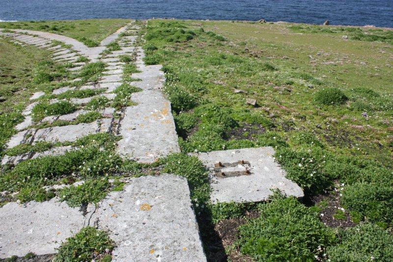 Detail of trackway.