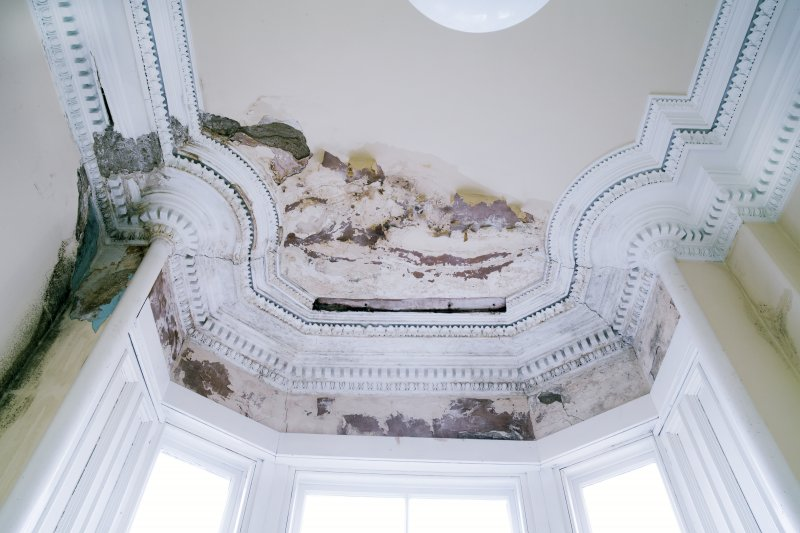 Interior. First floor. Detail of plasterwork in bay window of the south witness room.