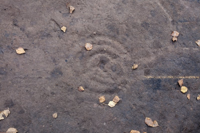 Detail of cup and ring mark.