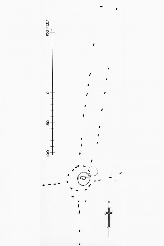 Plan of stone circle and alignments.