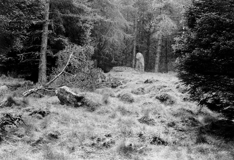 Central cairn, recumbent stone, pillar and fallen stone, viewed from the east. Original negative captioned: 'Stone Circle at Whitehill wood, Monymusk, June 1906 / View from East Side showing fallen stone and inner rampart, Recumbent Stone and pillar'.