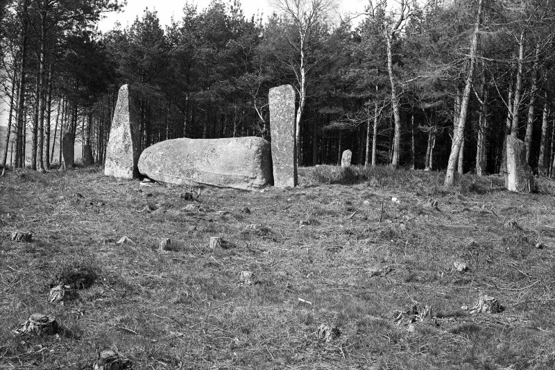 General view from the south. Original negative captioned: 'Cothiemuir Stone Circle near Castle Forbes, Keig 1908'.