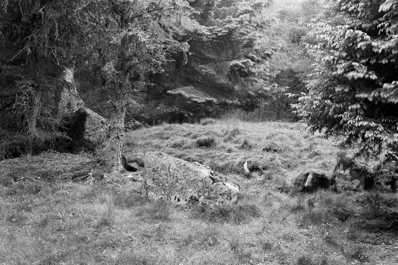 """View from the south east of the central cairn. Negative captioned: Stone Circle at Whitehill wood Monymusk June 1906 View from South East Showing position of Recumbent Stone, Pillars and inner Rampart."""""""