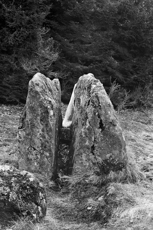 View of fractured recumbent stone. Original negative captioned 'Stone Circle at Loanhead, Daviot, Recumbent Stone from East 1906' .