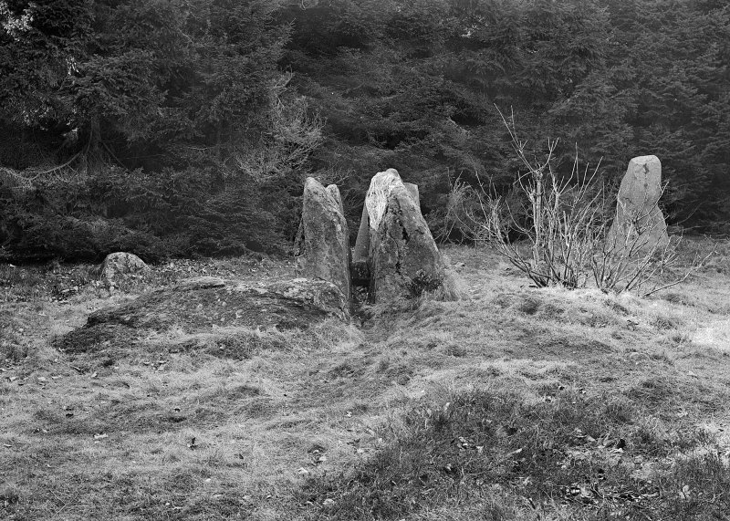 Recumbent stone and others, viewed from the east. Original negative captioned 'Loanhead Circle, Daviot View from East of Recumbent Stone Ap 1906'.