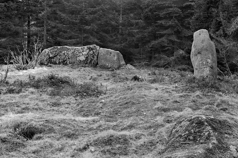 View of recumbent and stones of the circle. Negative captioned 'Loanhead Circle Daviot viewed from the West Ap 1906'.