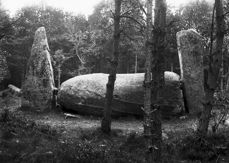 View of recumbent stone and flankers. Original negative captioned 'Cothiemuir Wood Circle, Keig. View from south June 1904'.