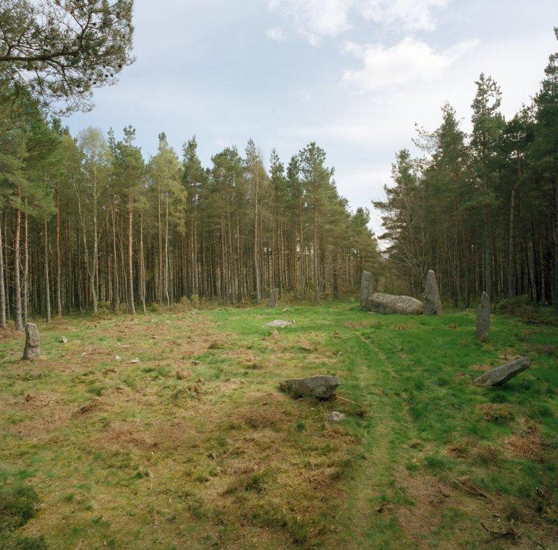 View of recumbent stone circle, Cothiemuir Wood.