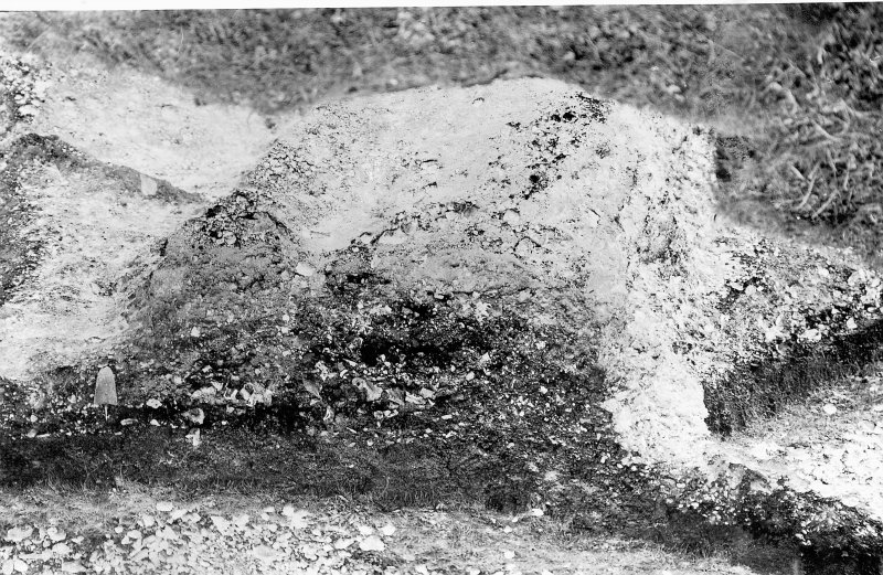 Digital copy of excavation photograph showing an excavated grave cut.