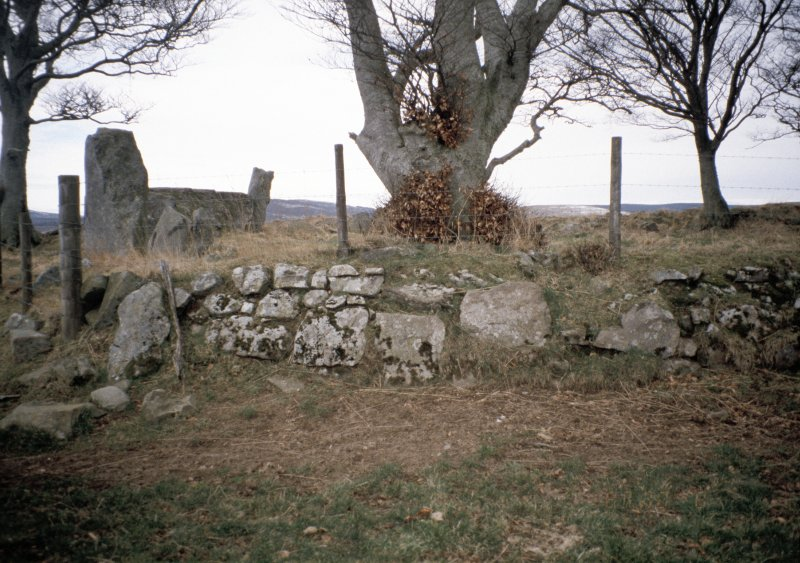 Copy of colour slide (H 93808cs) showing general view of recumbent stone circle.