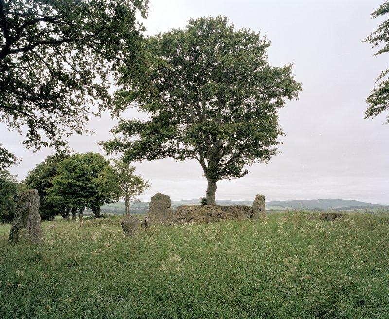 View of recumbent and flanking stones from North-East.
