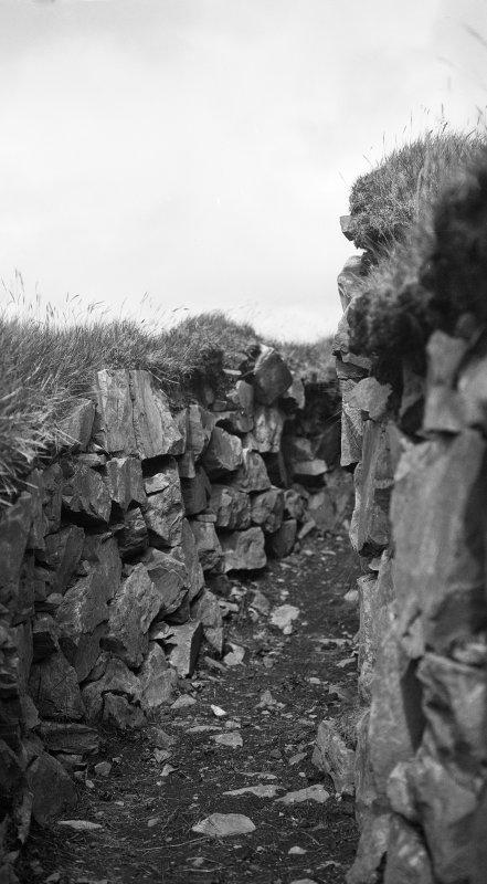 Dun Fiadhairt, detail of gallery.