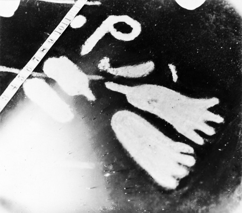 Site photograph : detail of markings - footprints
