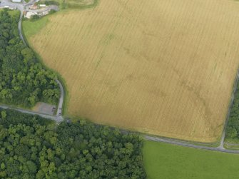 Oblique aerial view centred on the cropmarks of the barrow at Dry Bridge, Islay, taken from the SE.