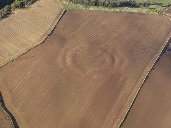 Oblique aerial view of the soilmarks of the fort of The Chesters, Spott, taken from the SE.