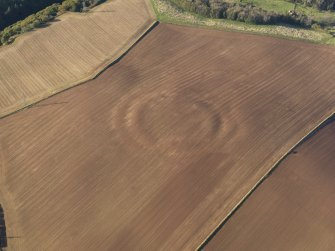 General oblique aerial view of the soilmarks of the fort of The Chesters, Spott, taken from the ESE.