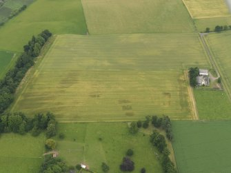 Oblique aerial view of the cropmarks of the ring ditch, legionary fortress and rig and furrow at Carpow with the farmsteading adjacent, taken from the WSW.