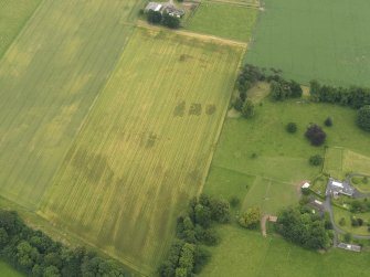 Oblique aerial view of the cropmarks of the ring ditch, legionary fortress and rig and furrow at Carpow with the Carpow House adjacent, taken from the NNW.