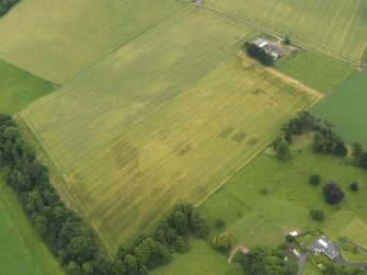 Oblique aerial view of the cropmarks of the ring ditch, legionary fortress and rig and furrow at Carpow with the farmsteading adjacent, taken from the NW.