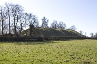 General view of castle mound from NE