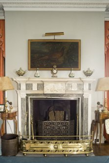 Interior. 1st floor. Drawing room. Fireplace. Detail