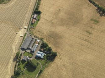 Oblique aerial view of the cropmarks of the round house, pits and possible souterrain with Hoprig Mains, taken from the NE.