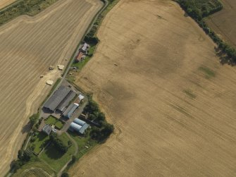 Oblique aerial view of the cropmarks of the round house, pits and possible souterrain with Hoprig Mains, taken from the NNE.