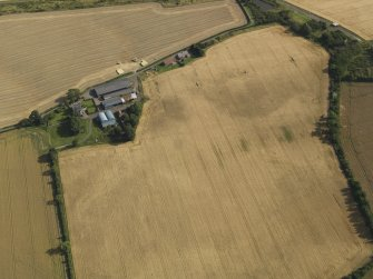 Oblique aerial view of the cropmarks of the round house, pits and possible souterrain with Hoprig Mains, taken from the NNW.