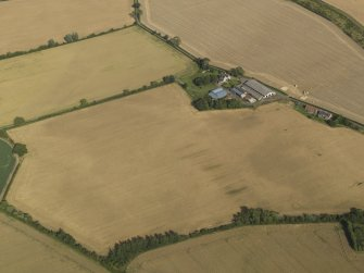 Oblique aerial view of the cropmarks of the round house, pits and possible souterrain with Hoprig Mains, taken from the W.