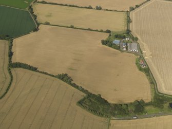 Oblique aerial view of the cropmarks of the round house, pits and possible souterrain with Hoprig Mains, taken from the SW.