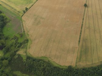 Oblique aerial view of the cropmarks of the palisaded enclosure and round house at Windy Mains, taken from the SSE.