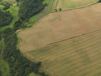 Oblique aerial view of the cropmarks of the palisaded enclosure and round house at Windy Mains, taken from the ENE.