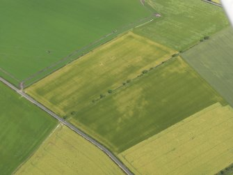 Oblique aerial view of the cropmarks of the round house, taken from the SSW.