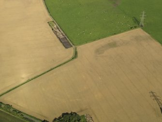 Oblique aerial view of the cropmarks of the settlement and round house, taken from the S.
