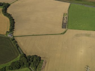 Oblique aerial view of the cropmarks of the settlement and round house, taken from the SE.