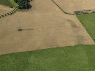 Oblique aerial view of the cropmarks of the settlement and round house, taken from the E.