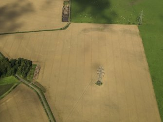 Oblique aerial view of the cropmarks of the settlement and round house, taken from the SSE.