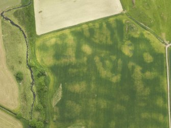 Oblique aerial view of the cropmarks of the round house, taken from the NNW.