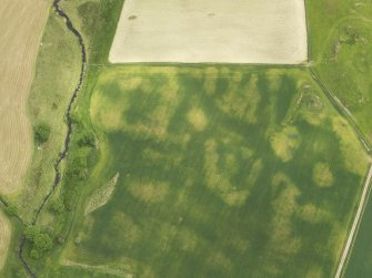 Oblique aerial view of the cropmarks of the round house, taken from the WNW.