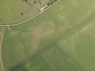Oblique aerial view of the parchmarks of the round house at Holms, taken from the SW.