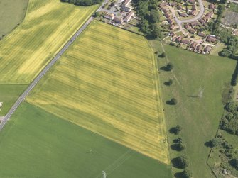 Oblique aerial view of the cropmarks of the cursus monument, enclosure and henge at Drybridge, taken from the NNW.