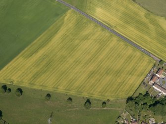 Oblique aerial view of the cropmarks of the cursus monument and pits at Drybridge, taken from the SW.