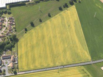 Oblique aerial view of the cropmarks of the cursus monument and pits at Drybridge, taken from the E.