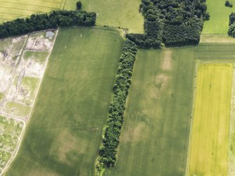 Oblique aerial view of the cropmarks of the possible round barows and the possible square barrow, looking SSE.
