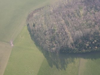 Oblique aerial view of Jackschairs Wood, looking WSW.